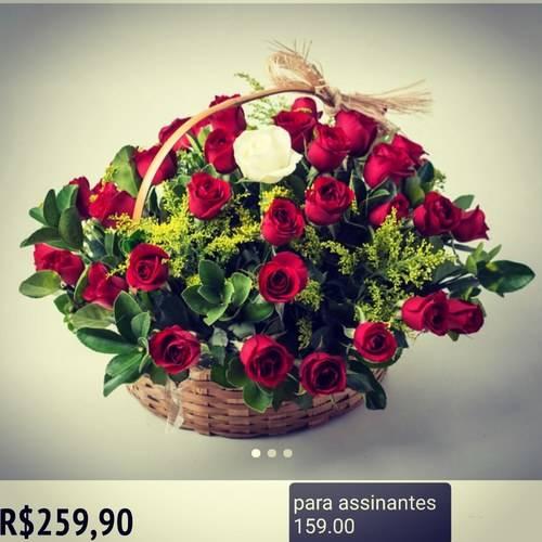 Photo 68239026b837a15eed31